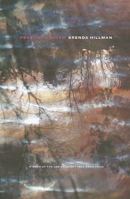 Practical Water By Hillman, Brenda